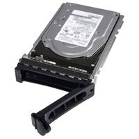 DELL 1TB 7_2K RPM SATA