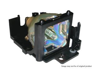 Go Lamp for OPTOMA SP.8ZJ01GC01 P-VIP