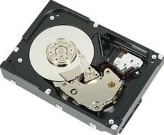 Dell 1_8TB 12Gbps 512e 2_5_hybrid  in 3_5_ tray HotPlug  HD