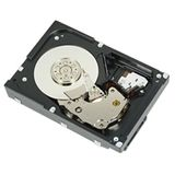 DELL 1TB 7_2K RPM NLSAS 6Gbps 3_5in Cabled hdd CusKit