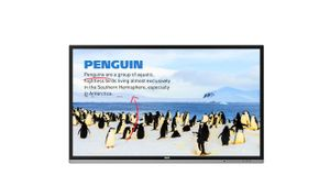 55_ RP552H Interactive Flat Panel