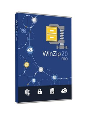 WZIP 20 P EDUCATION LICENSE ML (100000+) EN