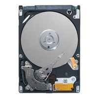 1TB SATA 3_5in 7_2K  RPM Rear Hard Drive Assembled in Standard Carrier C8220X - Kit