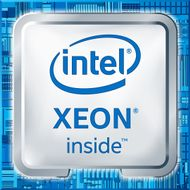 Intel Xeon E3-1225 v5 3_3/3_7G_ 4C/4T  no turbo (80W)_ CusKit