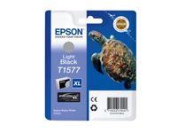 EPSON Epson R3000 Light Black