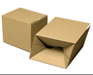 DS Smith Packaging Papkasse 310x230x250mm 1-lags Automatbund