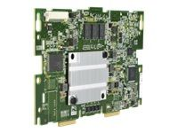 Hewlett Packard Enterprise H240NR SMART HBA . ACCS (759553-B21)