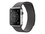 APPLE 42mm Stainless Steel Case with Storm Grey Leather Loop - Large