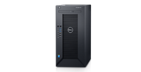 DELL T30 E3-1225v5 8GB 1TB 1Y NBD (30-0265)