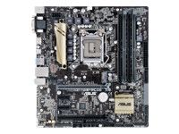 ASUS MB Intel 1151 ASUS Z170M-Plus (90MB0M60-M0EAY0)