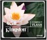 KINGSTON Minneskort Kingston CF 4GB