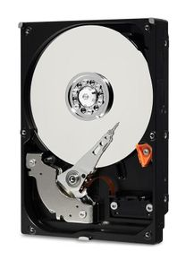 WESTERN DIGITAL 1TB BLUE SATA 6 GB/S 5400 RPM 2.5IN (WD10SPZX)