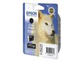EPSON T096 Photo Black Cartridge R2880