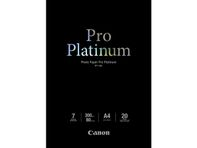 PT-101 10x15cm Photo Paper Pro Platinum 300g (20)