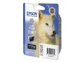 EPSON T096 Light Black Cartridge R2880