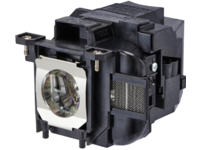 MICROLAMP Projector Lamp for Epson (ML12513)