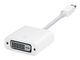 APPLE Mini DisplayPort to DVI Adapter