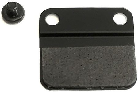 APPLE Mini SSD Retainer Plate with (076-00018)