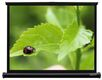 GRANDVIEW Pocket screen 60""