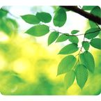 Earth Series Mouse pad- Blade
