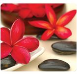 FELLOWES Earth Series Mouse pad- spa flower