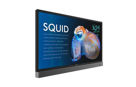 "BENQ 55"" UHD RP553K INTERACTIVE FLAT PANEL (9H.F3TTK.RE1)"
