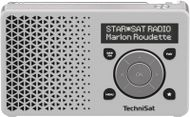 TECHNISAT DigitRadio 1 white/s F-FEEDS (0001/4997)