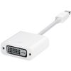 APPLE Mini DisplayPort to DVI Adapter (MB570Z/B)