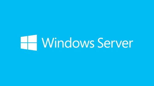 MICROSOFT MS Windows Server Standard 2019 64Bit English 1 License DVD 16 Core License 10 Client (EN) (P73-07701)
