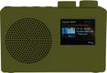 POP DELUXE dab+/fm, green