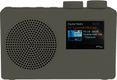 POP DELUXE dab+/fm, grey