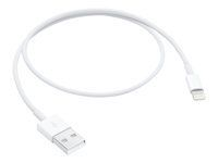 APPLE LIGHTNING TO USB CABLE (0.5 M)                          ML CABL (ME291ZM/A)