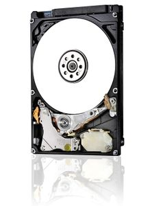 WESTERN DIGITAL TRAVELSTAR Z5K1 1TB HTS541010B7E610 5400RPM INT (1W10028)