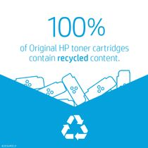 HP Original HP 13X LaserJet-toner med høj kapacitet,  sort (Q2613X)