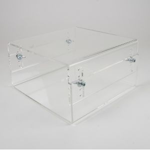 NEWSTAR Acrylic Monitor Raiser (NS-MONITOR40)