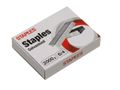 STAPLES Hæfteklamme STAPLES 21/4 6/4/pk 2000/pk